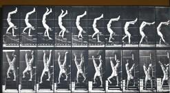 Meccanica e biomeccanica del movimento degli atleti