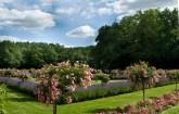 Uno dei magnifici giardini di un castello nella Valle della Loira forse il Rivau