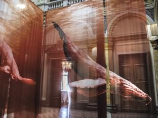 Veli con disegni di grandi cetacei e suoni nell'atrio di Villa Erba