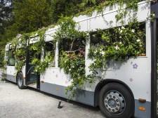 Bus Garden