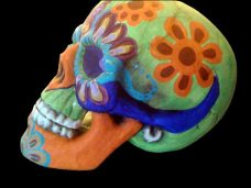 Painted Skull by Tonia Davis