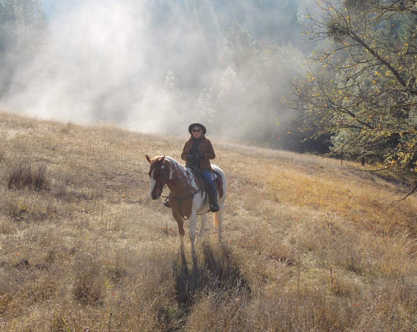 portrait of Nancy Yturriaga Adams, riding her horse on her Applegate Valley, Oregon ranch