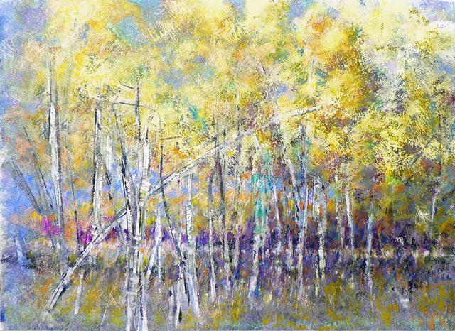 Aspen Symphony, pastel by Peter Coons