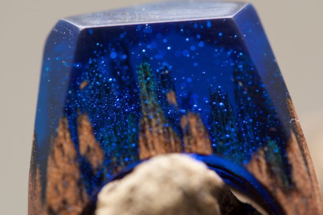miniature-scenes-rings-secret-forest-19