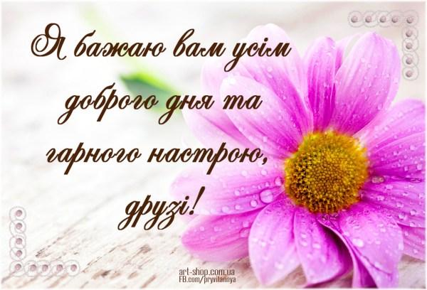 Я бажаю вам усім доброго дня та гарного настрою, друзі! # ...