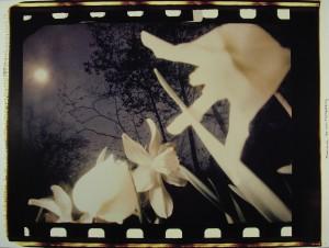 Crane13_VisionsofEnarc_1983-86