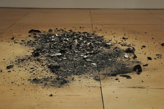 """""""Bone Char,"""" animal bones burned over wood fires. partial inventory: turtle, goat, horse, cow, fox, birds), 2011"""