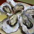久美浜の焼き牡蠣