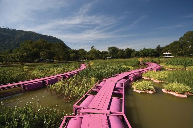 Pink Path by Thanapon Jetwaranyu