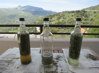 Tinctures from local herbs and traditional Cretan drink Raki