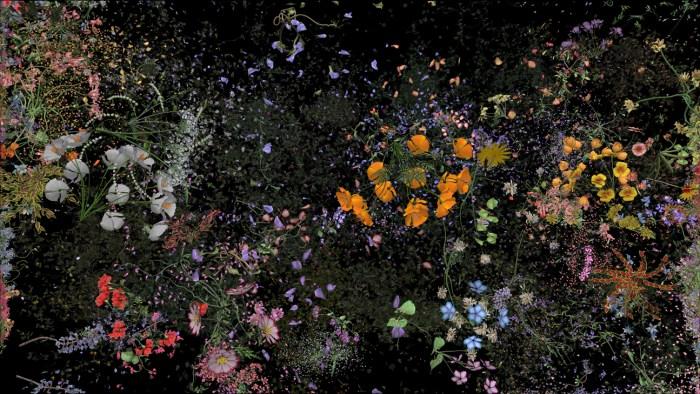 """Jennifer Steinkamp """"Botanic 1"""" Photo Courtesy of ACME Gallery"""