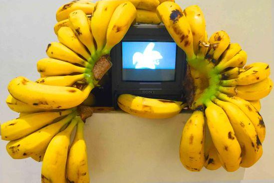 "Leonardo Gonzalez. ""Cabbage & Kings"", Video Installation, 2016. Photo Credits: Marisa Caichiolo"