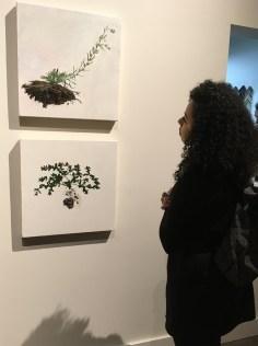 Andrea Bersaglieri, Suburban Nature, Curve Line Space; Photo credit Patrick Quinn