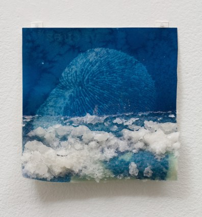 Andrea Chung, Mushroom Coral, Only to meet nothing that wants you, Klowden Mann; Image courtesy of the gallery