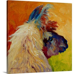 Calico Llama by Marion Rose Art Print on Canvas