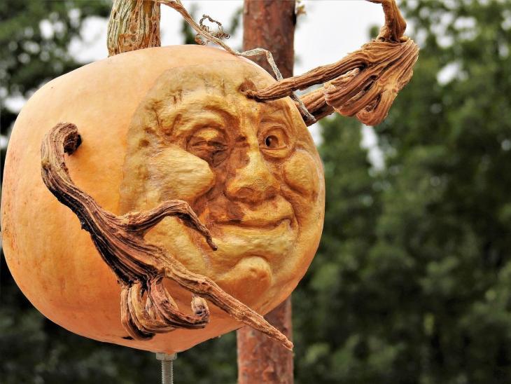 Halloween Pumpkin Carving Ideas | Sculpted Face