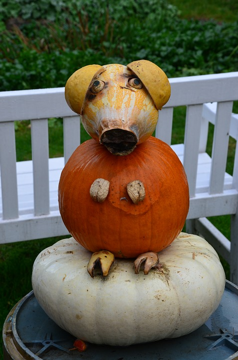 Halloween Pumpkin Carving Ideas | Cute Pig