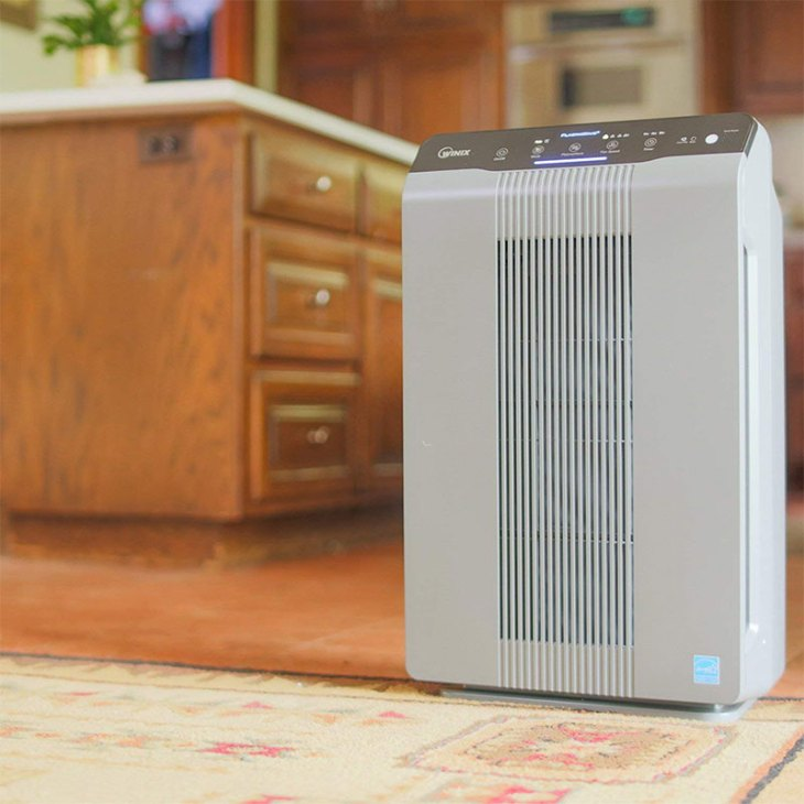 Winix 5300-2 Air Purifier with True HEPA