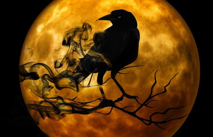 Moonlit Raven | Printable Halloween Art