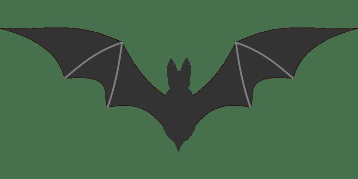 Vampire Bat Halloween Clip Art