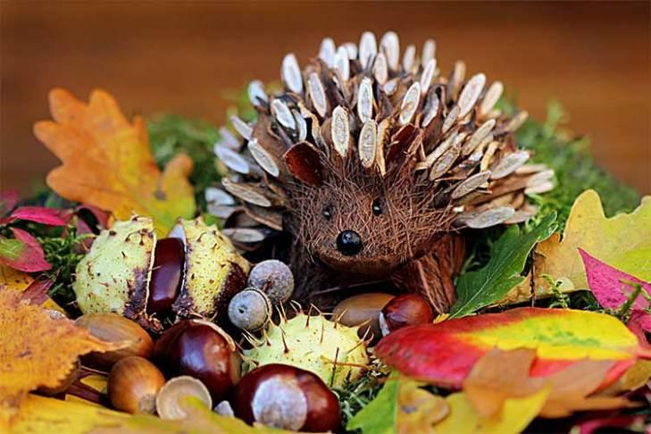 Cute DIY Hedgehog
