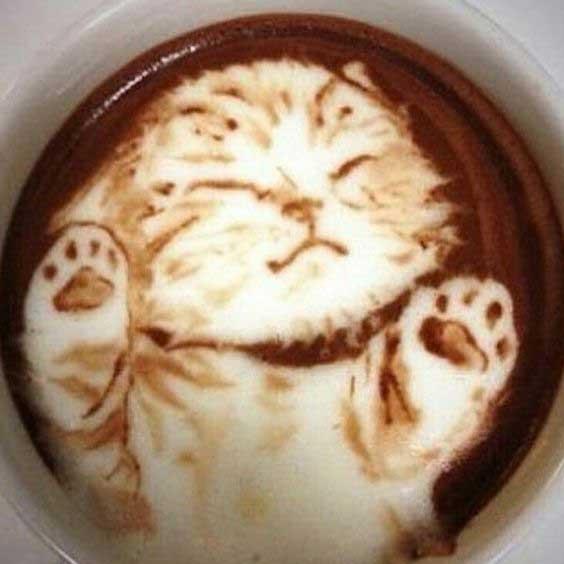 Cute Kitten Latte Art