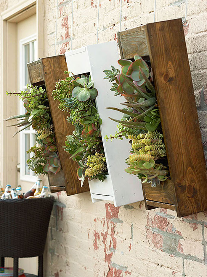 DIY Garden Projects |  Vertical Succulent Garden