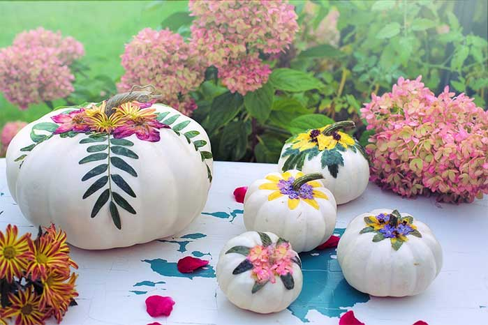 DIY White and Floral Painted Pumpkins
