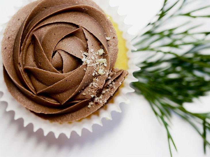 Elegant Chocolate Swirl Cupcake