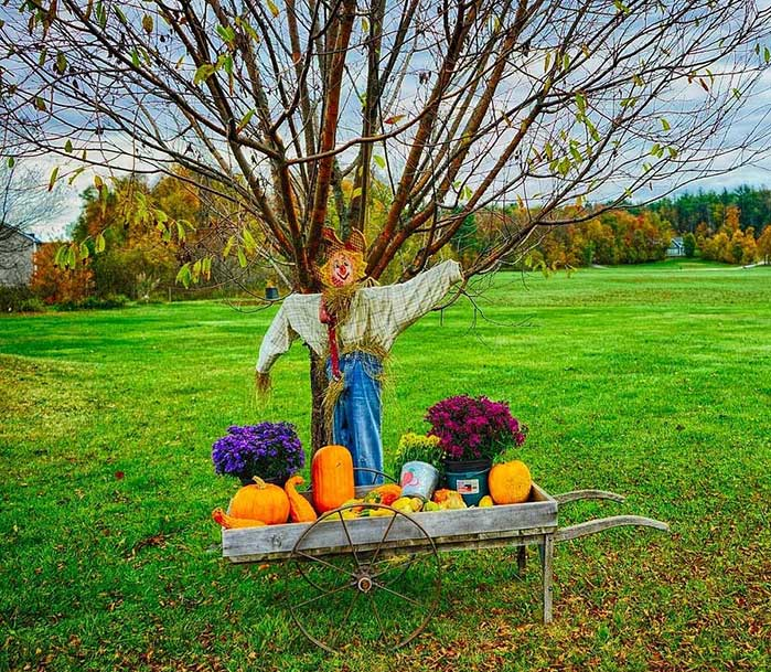 Outdoor DIY Fall Decor Wagon & Scarecrow