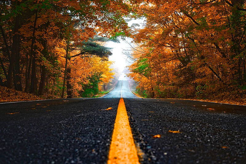 Go for a Fall Colors Drive