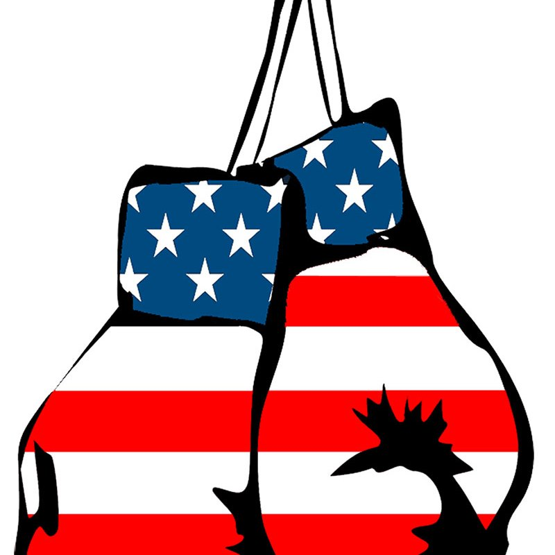 American Flag Boxing Gloves Fitness Art Printable