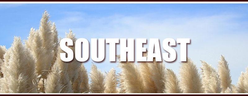 Southeastern USA