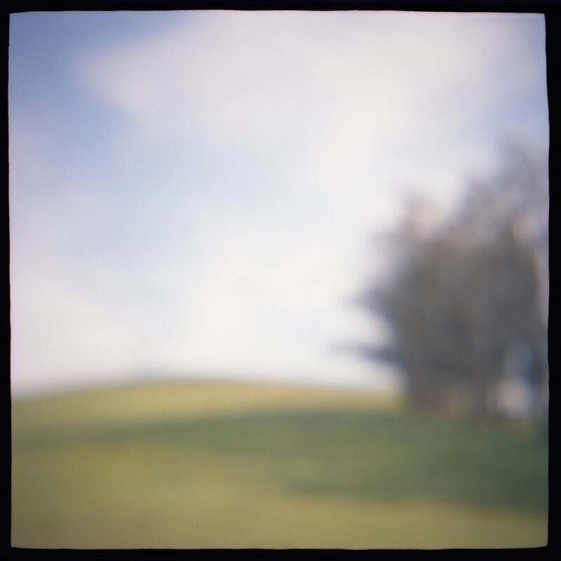 06 Meadow Edge Daniel Grant Remembered Landscapes