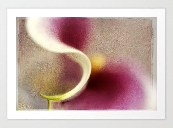 Calla Lily Abstract I Art Print