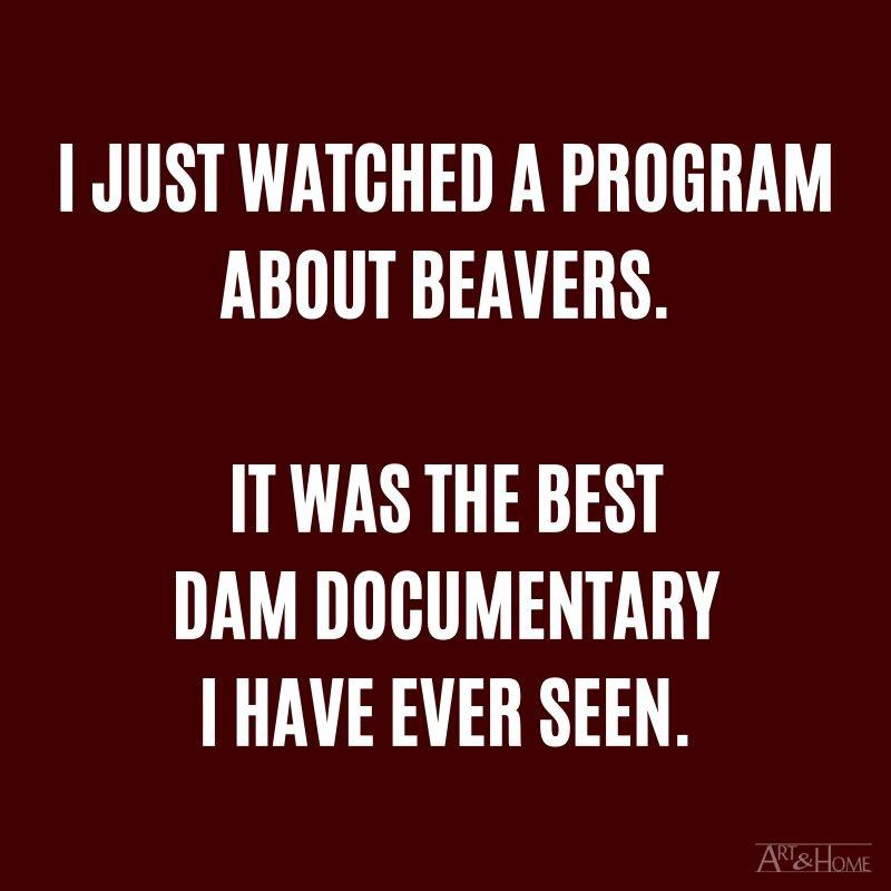 I just watched a program about beavers. It was the best dam documentary I have ever seen.