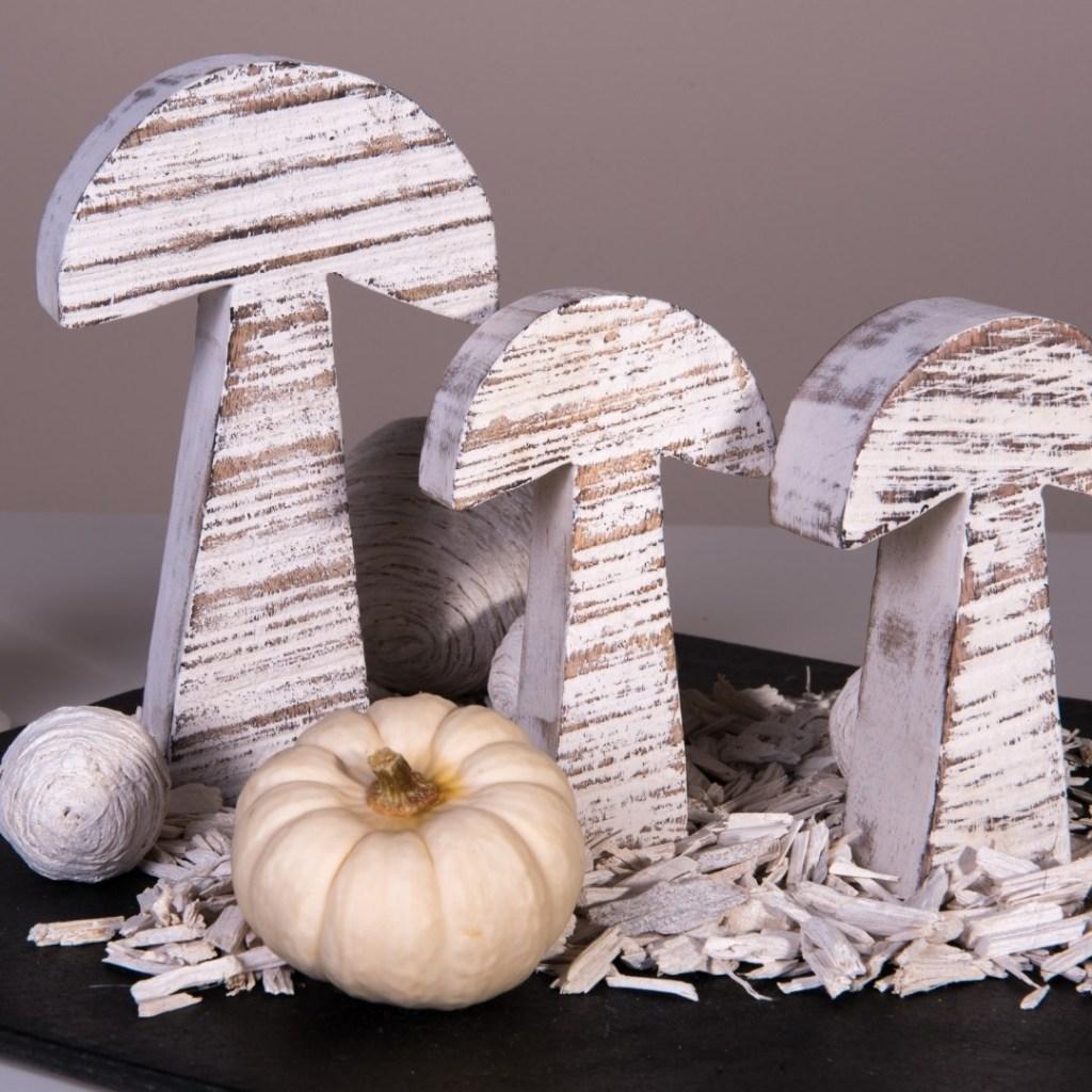 Pumpkins with Wood Mushrooms