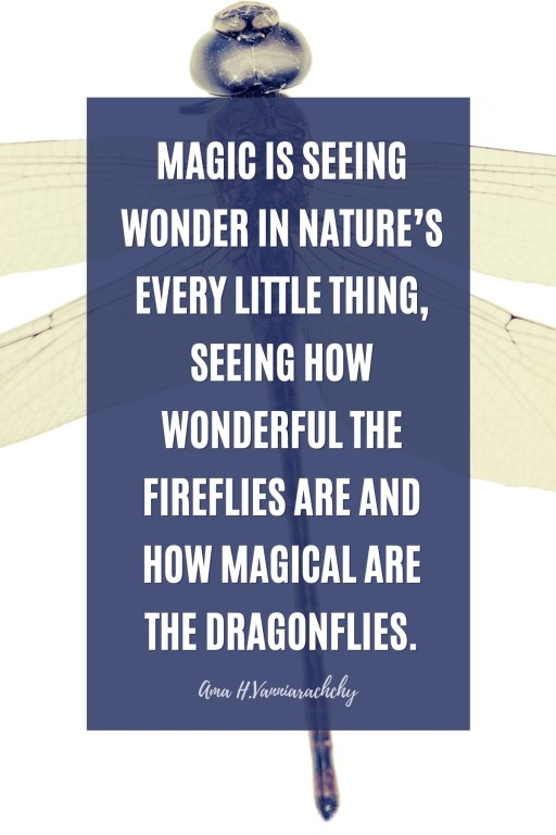 Dragonfly Quote by Ama H. Vanniarachchy