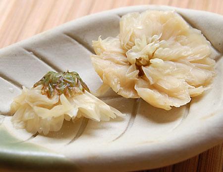 ChrysanthemumWet072509