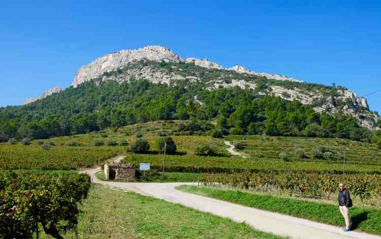 Starting our hike around the Dentelles de Montmirail