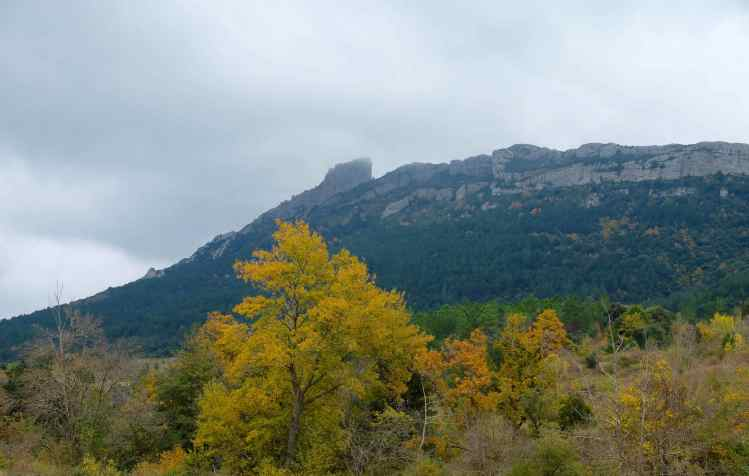 Peyrepertus, still from afar