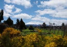 Kiwi Scenic Rail, National Park