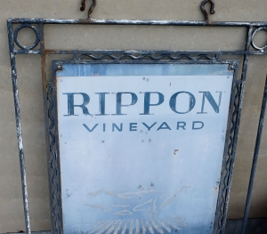 Rippon winery welcome