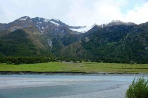 Wild pastureland New Zealand
