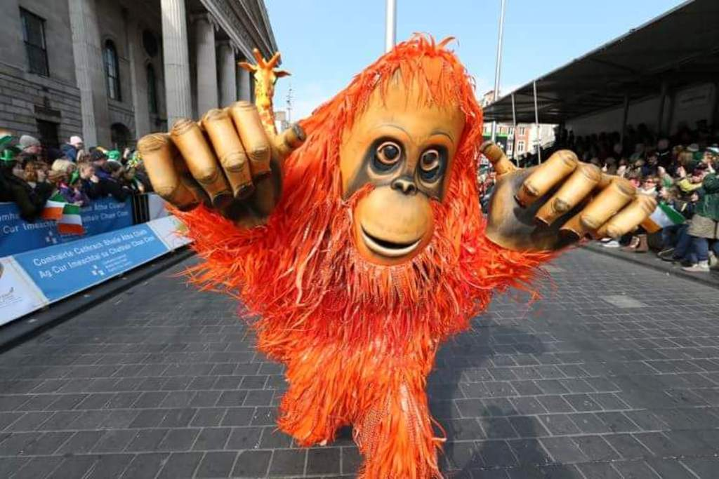 orangutan  street entertainer