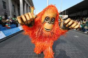 orangutan  street entertainer