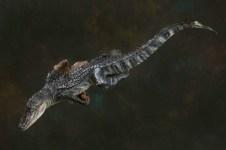 alligatorlifesize
