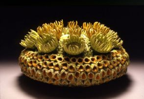 Plant-Creature, 2006, Ceramics, Multiple fired, 30x30x16 cm.