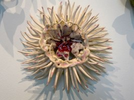spike lace flower, 2008