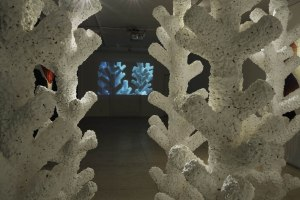 "Annika Teder, Video Installation ""The Coral Riff"""